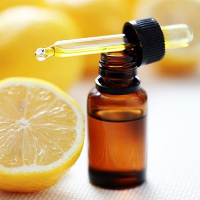 traitements naturels contre les poux huiles essentielles huile d 39 olive vinaigre et karit. Black Bedroom Furniture Sets. Home Design Ideas
