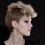coiffure-rentree-2013-coupe-courte-14