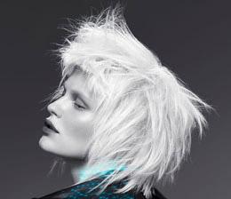 Carr vip cagnes sur mer avis tarifs horaires t l phone - Salon de coiffure vip ...