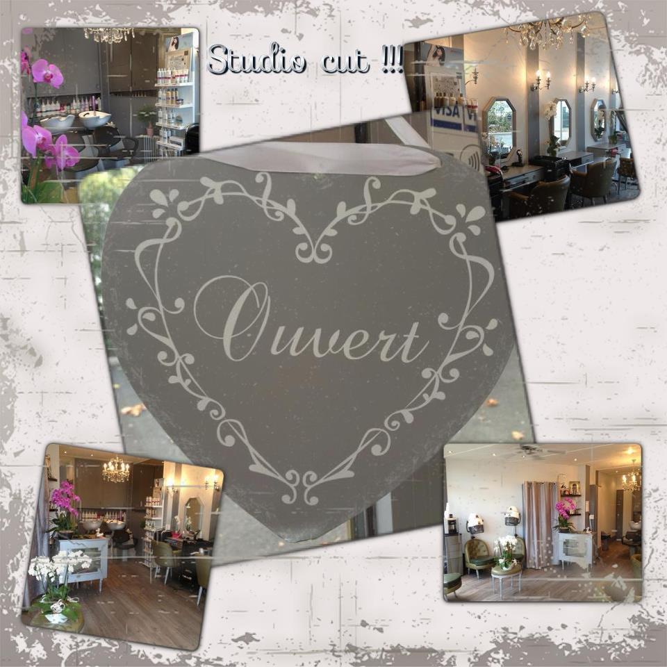 Studio Cut à Chevilly-Larue