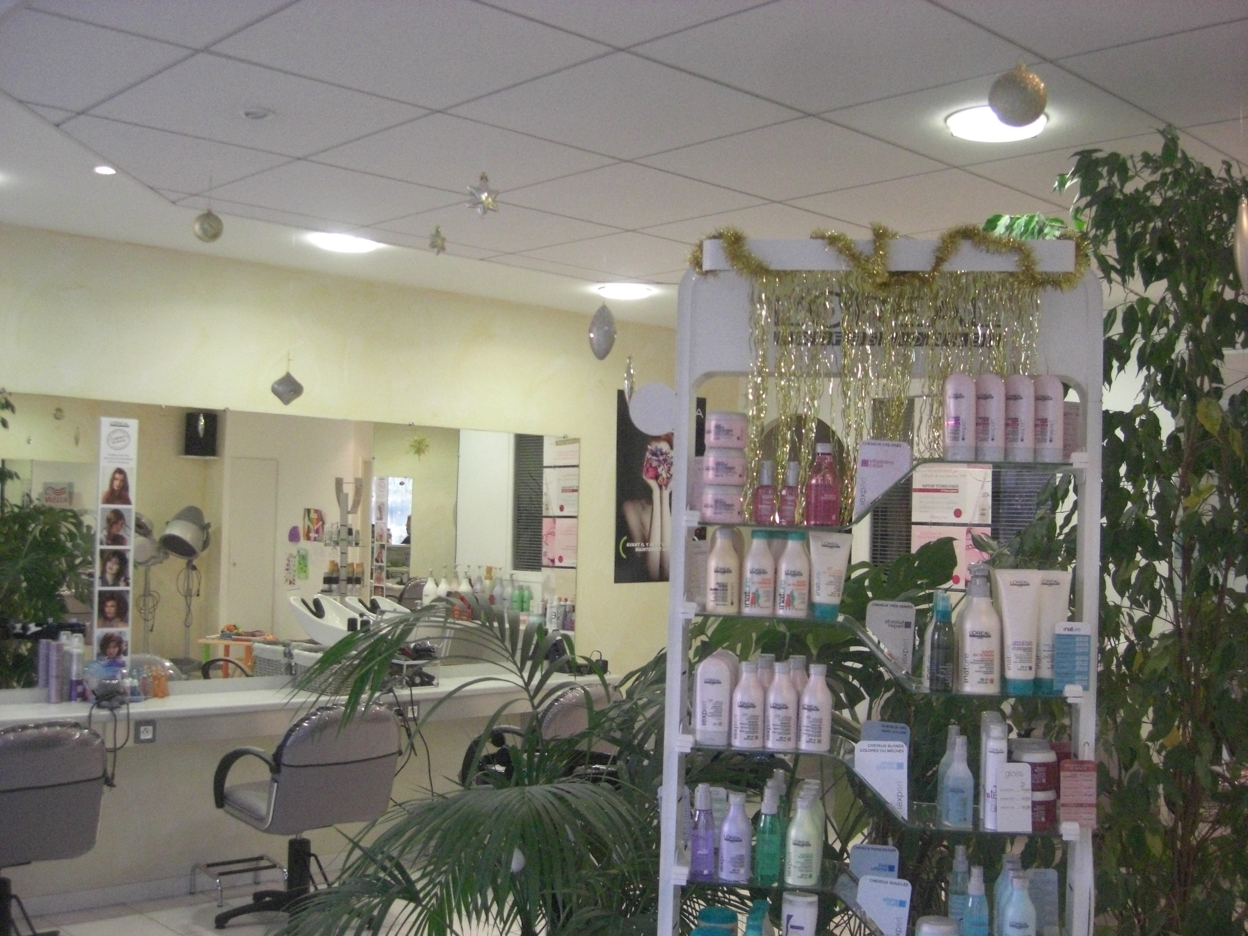 Decoration de noel salon de coiffure for Deco salon tendance