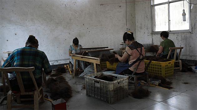 Extensions naturelles chinoises poils chèvres