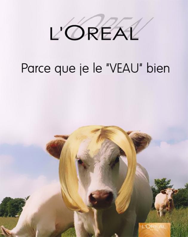 Détournement publicité L'Oréal