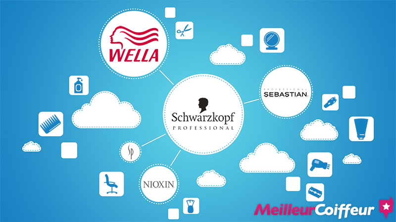 Wella Schwarzkopf acquisition